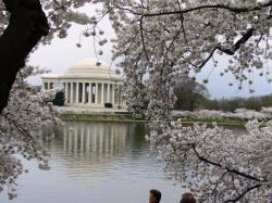 Washington DC, DC